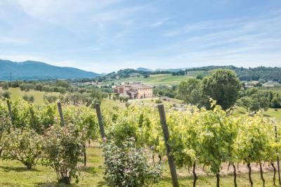 Farmhouse for Sale in Montecarlo