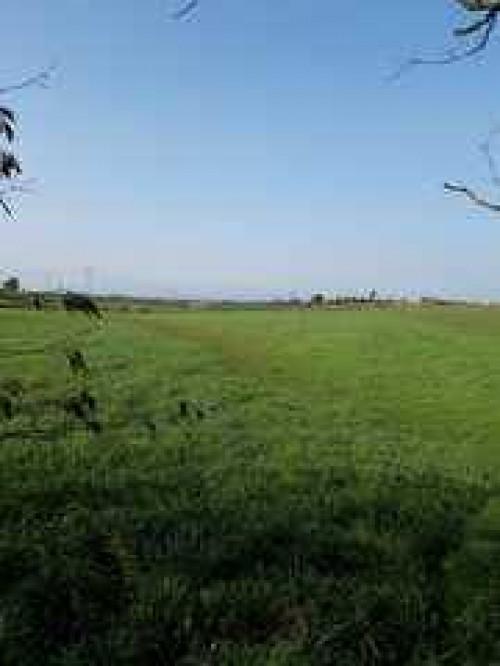 Terreno Agricolo in Vendita a Roma