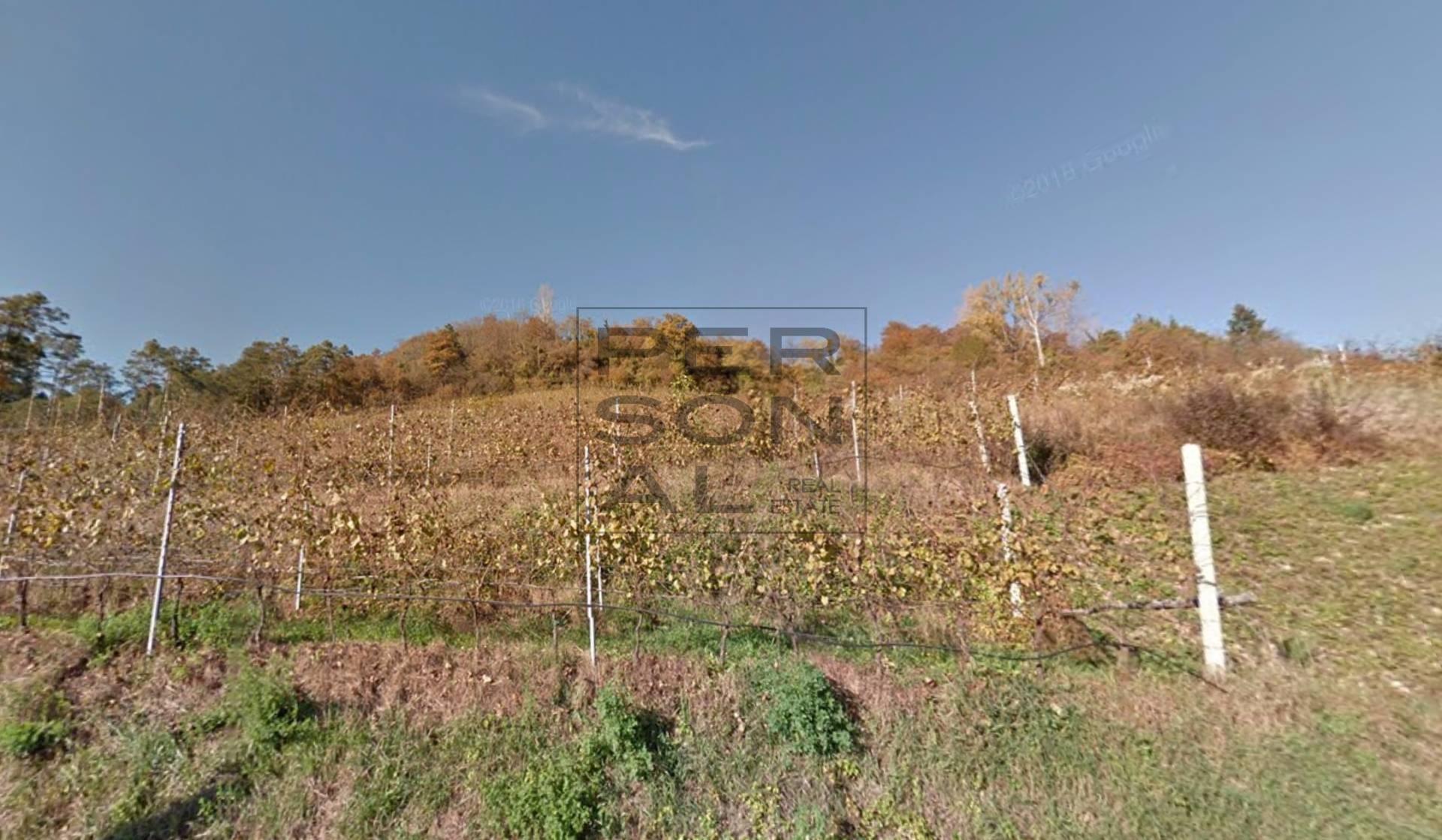 Terreno Agricolo in vendita a Stenico, 9999 locali, zona Zona: Premione, prezzo € 315.000 | CambioCasa.it