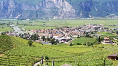 Ufficio in Affitto a San Michele all'Adige