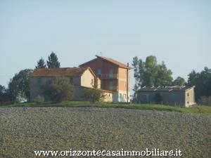 Azienda Agricola in Vendita a Appignano del Tronto