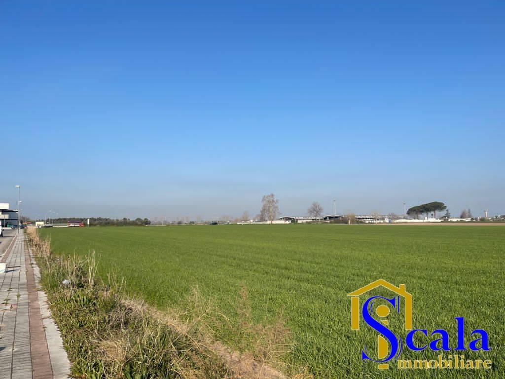 Terreno edificabile in vendita a San Tammaro (CE)