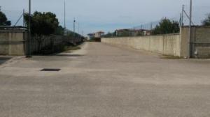 Capannone in Affitto a Santa Maria Capua Vetere