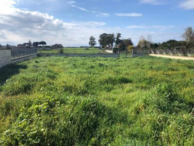 Terreno edificabile in Vendita a Fiumicino