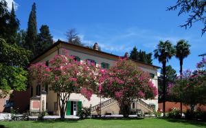 Villa in Vendita a Cortona
