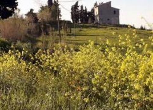Terreno edificabile in Vendita a Recanati