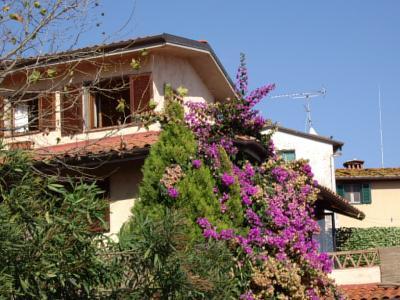 Villa Singola in Vendita a Massarosa