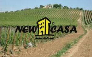 Azienda Agricola in Vendita a Civitella di Romagna