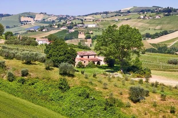Azienda Agricola in vendita a Carassai, 9999 locali, prezzo € 390.000 | Cambio Casa.it