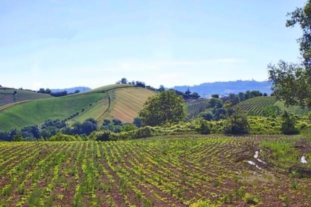 Terreno Agricolo in vendita a Carassai, 9999 locali, prezzo € 200.000   Cambio Casa.it