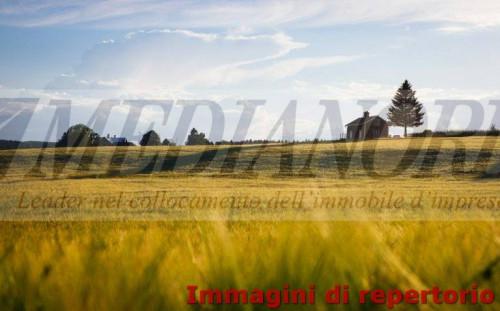 TERRENO EDIFICABILE in Vendita a Cologno al Serio
