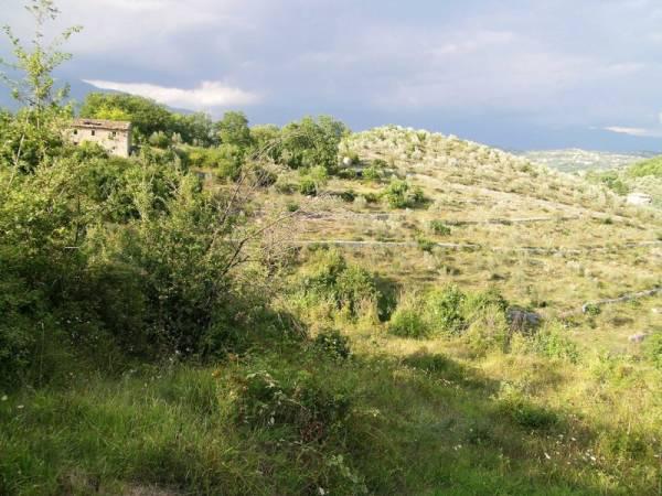 Terreno Agricolo in vendita a Arpino, 9999 locali, prezzo € 125.000 | Cambio Casa.it