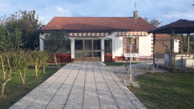 Casa singola in Vendita a Colfelice