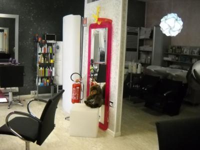 Parrucchiere donna in Vendita a Ascoli Piceno