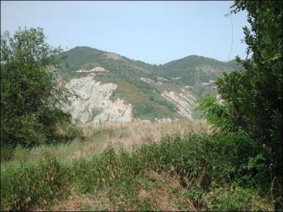 Casa colonica in Vendita a Castignano