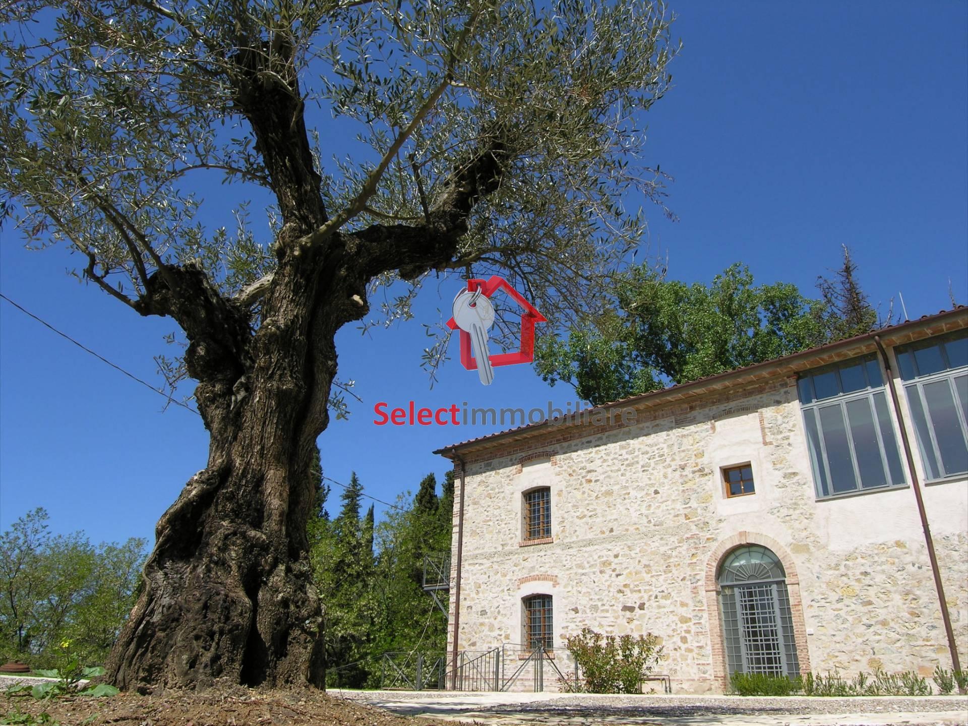 Appartamento in vendita a Massarosa, 4 locali, zona Zona: Bargecchia, prezzo € 280.000 | Cambio Casa.it