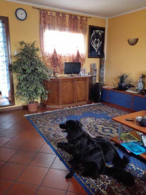 Villa in vendita a San Fior, 5 locali, prezzo € 210.000 | Cambio Casa.it