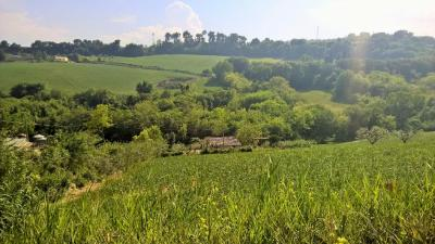 country House for Sale to Cupra Marittima