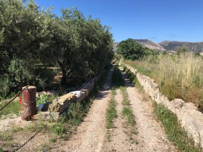 Terreno Agricolo in Vendita a Bagheria