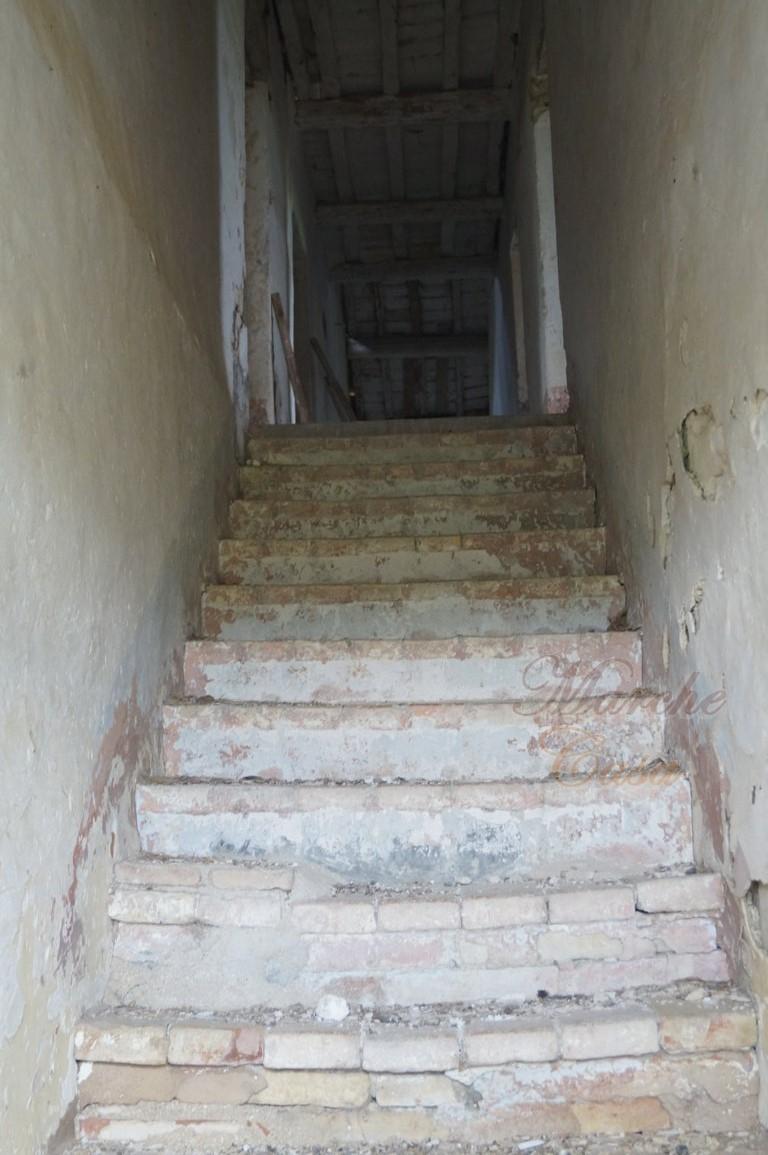 Marche casa CASALE EZECHIELE