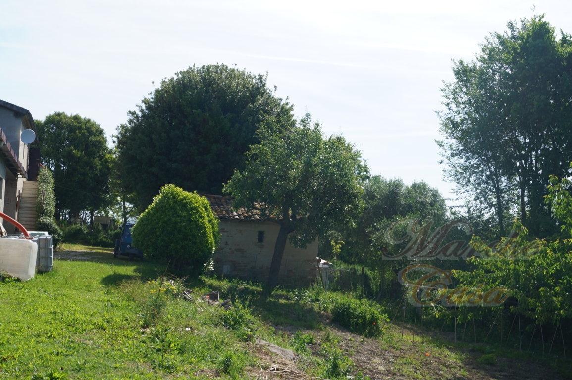 Marche casa CASALE DEL GALLO CEDRONE
