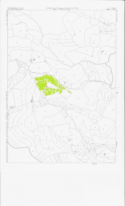 Terreno edificabile in Vendita a Cervo