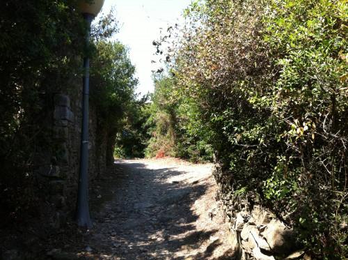 Terreno in Vendita a Andora