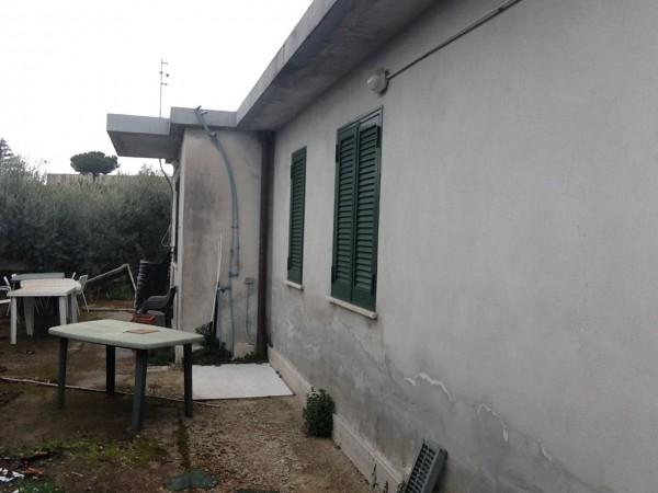 Bilocale Albano Laziale Via Degli Ulivi 5