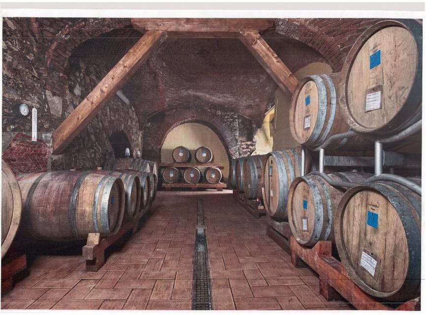 Azienda Agricola in vendita a Stradella, 9999 locali, Trattative riservate | CambioCasa.it