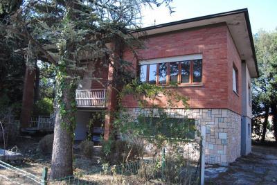 Casa singola in Vendita a Treia