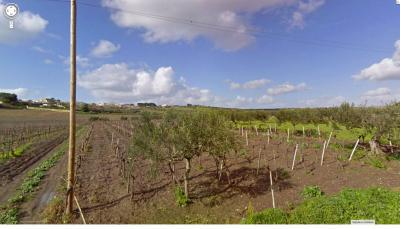 Agricultural Land for Sale in Mazara del Vallo