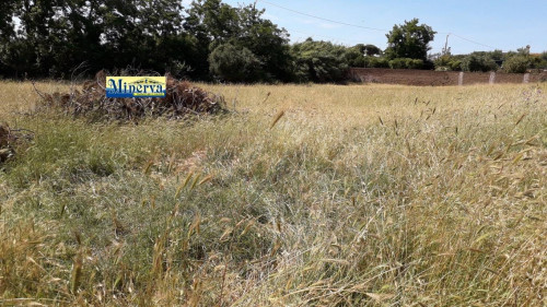 Terreno edificabile in Vendita a Anzio