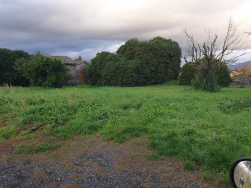 Terreno Agricolo con Rustico in Vendita a Velletri