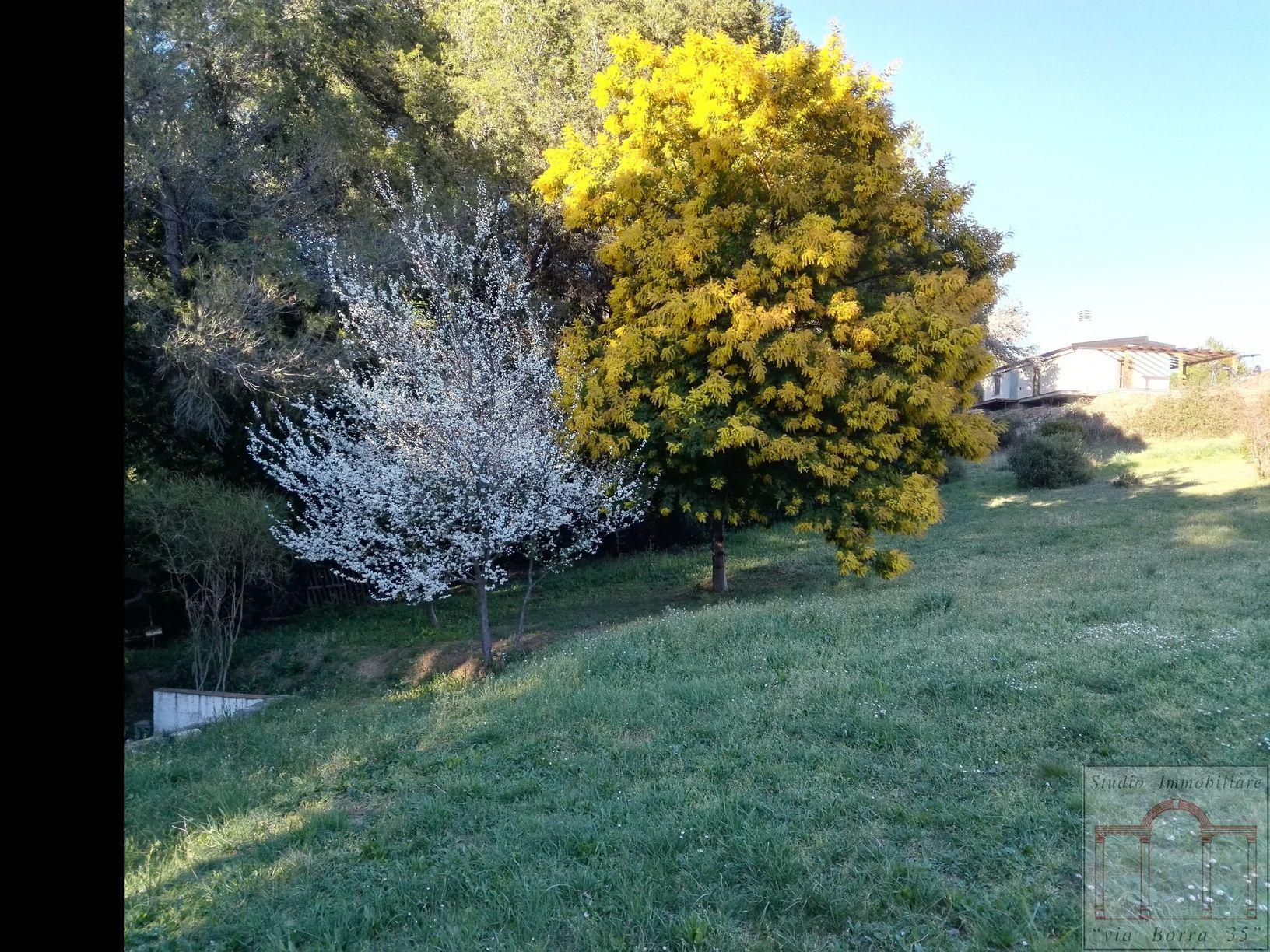 Terreno agricolo in vendita - Livorno