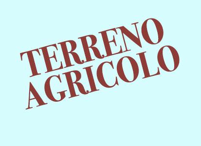 Terreno Agricolo in vendita a Roncade, 9999 locali, prezzo € 150.000 | Cambio Casa.it