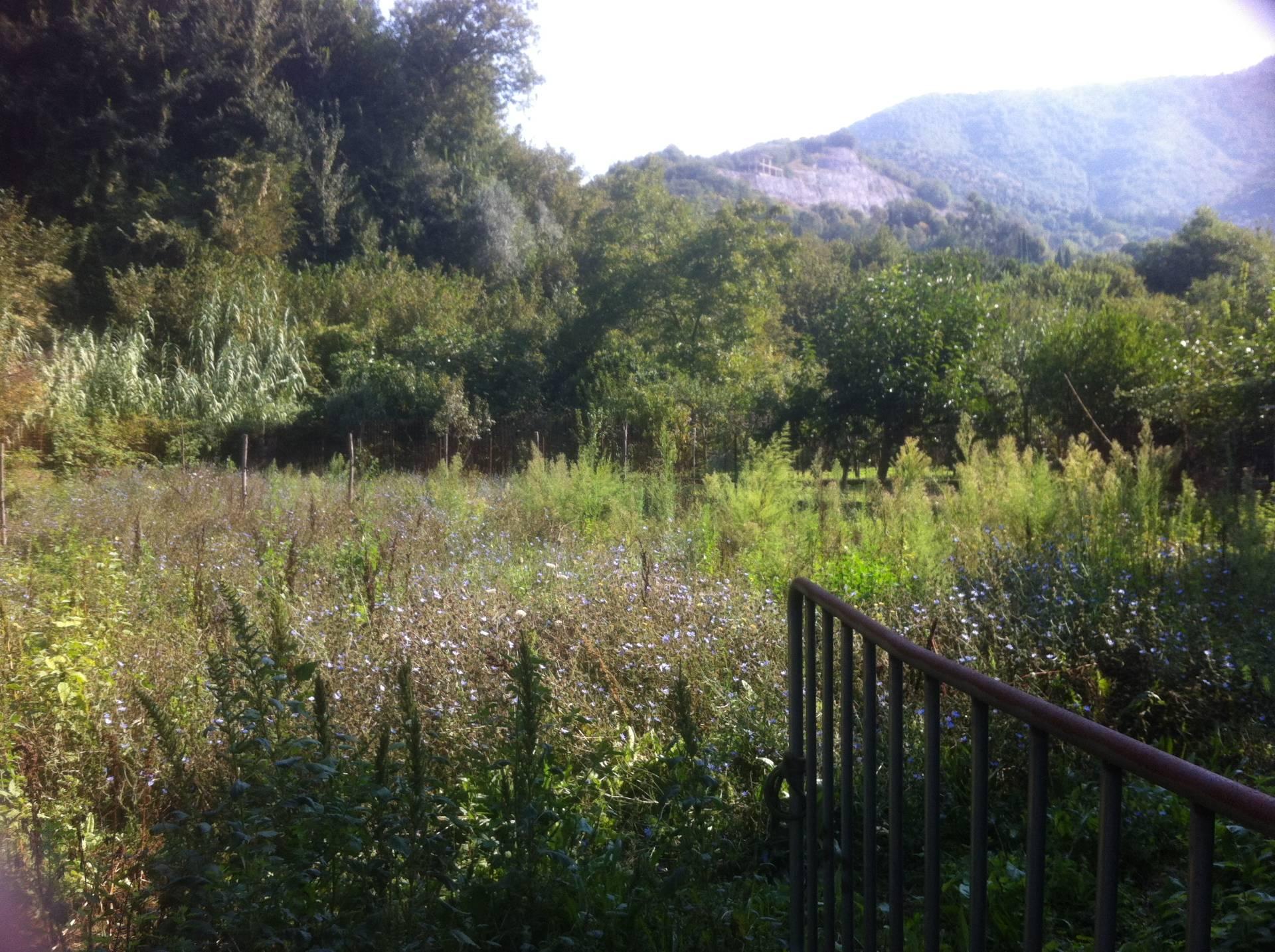 Terreno Agricolo in vendita a Pellezzano, 9999 locali, zona Zona: Coperchia, prezzo € 15.000 | CambioCasa.it