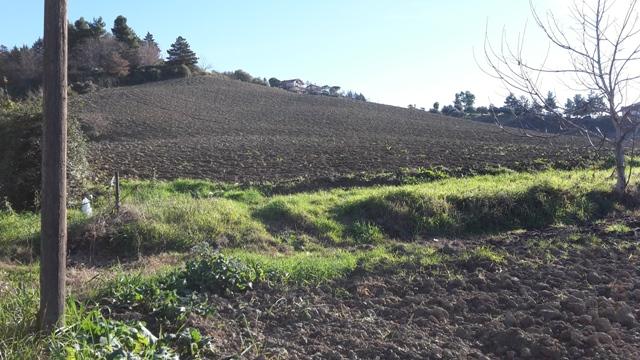 Terreno Edificabile Residenziale in vendita a Chieti, 9999 locali, zona Località: LocalitàColleS.Antonio-Bucchianico, prezzo € 55.000 | CambioCasa.it