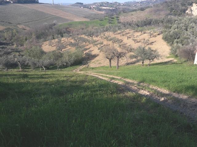 Terreno Edificabile Residenziale in vendita a Casalincontrada, 9999 locali, prezzo € 55.000 | Cambio Casa.it