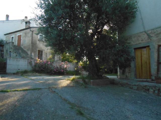 Soluzione Semindipendente in vendita a Roccamontepiano, 8 locali, zona Zona: Molino, prezzo € 98.000 | CambioCasa.it