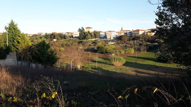 Terreno Agricolo in vendita a Cepagatti, 9999 locali, prezzo € 75.000 | CambioCasa.it