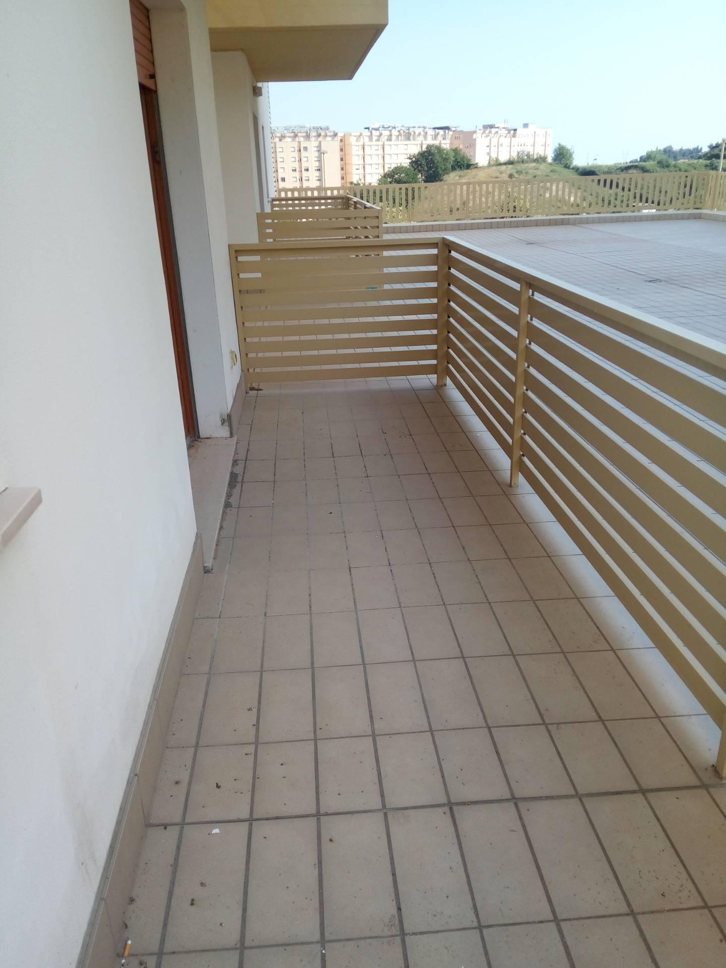 Appartamento CHIETI affitto  Scalo - Università  Immobiliare Lattanzio e Miccoli snc