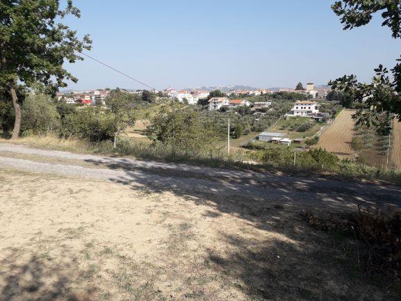 Terreno Agricolo in vendita a Cepagatti, 9999 locali, prezzo € 70.000 | CambioCasa.it