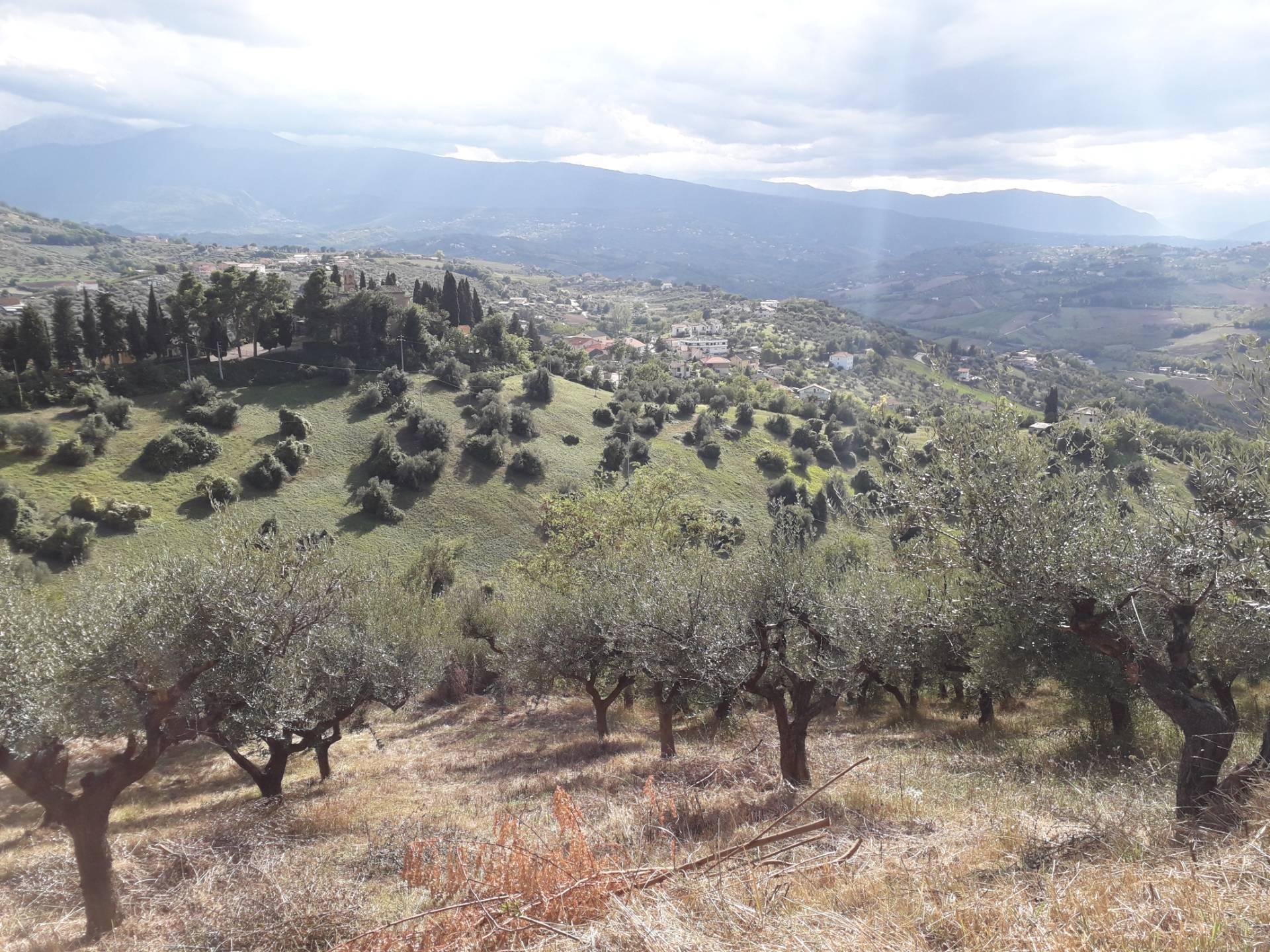 Terreno Agricolo in vendita a Bucchianico, 9999 locali, prezzo € 26.000 | CambioCasa.it