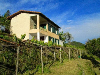 Villa for Sale in Perinaldo