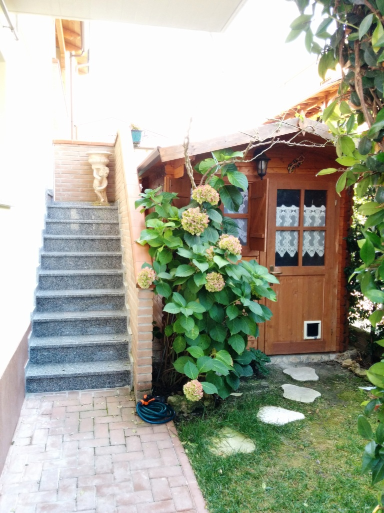 Appartamento in vendita a Cento, 2 locali, zona Zona: Renazzo, prezzo € 115.000 | Cambio Casa.it