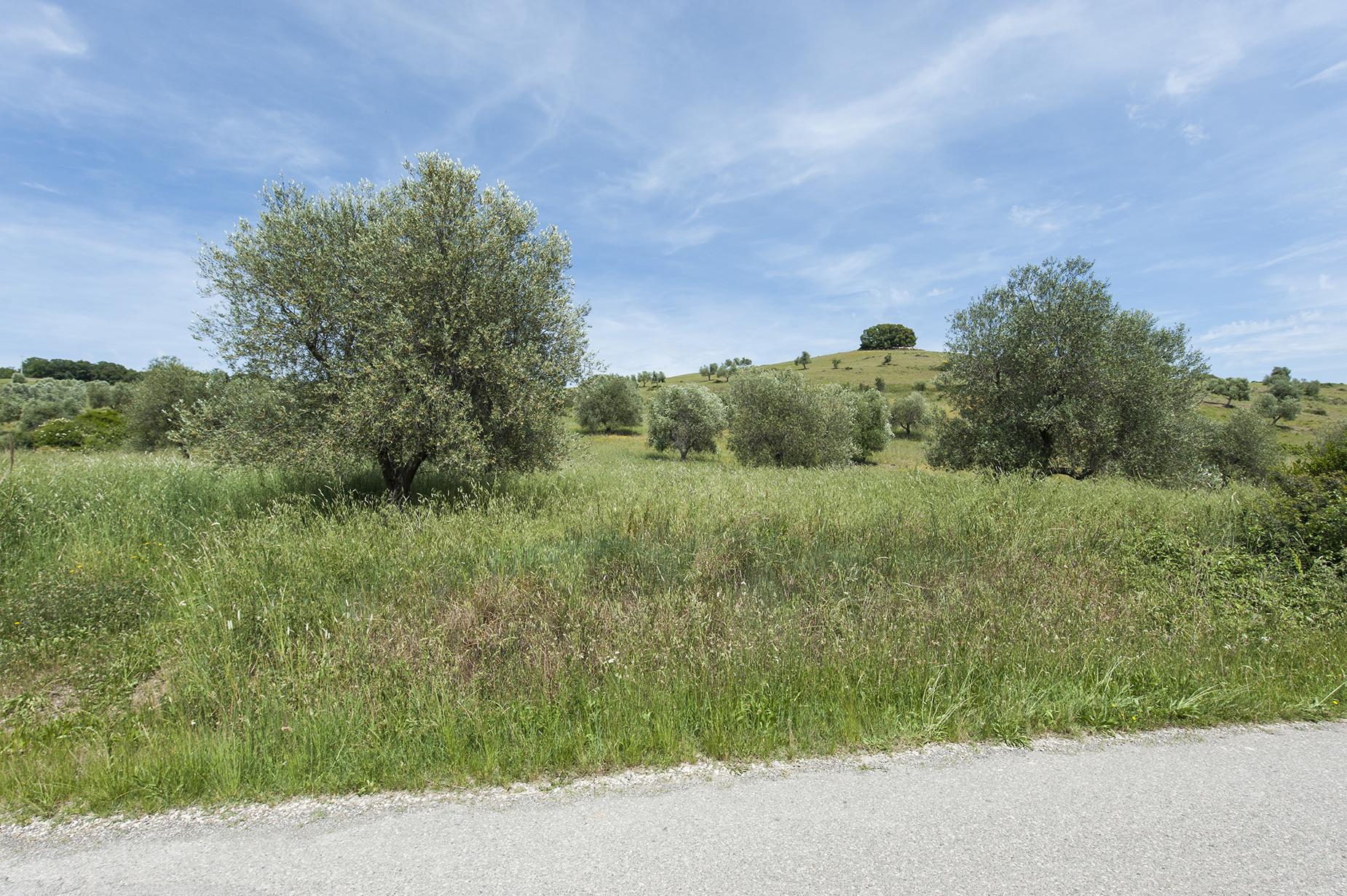 Roccalbegna, Strada Di Usi