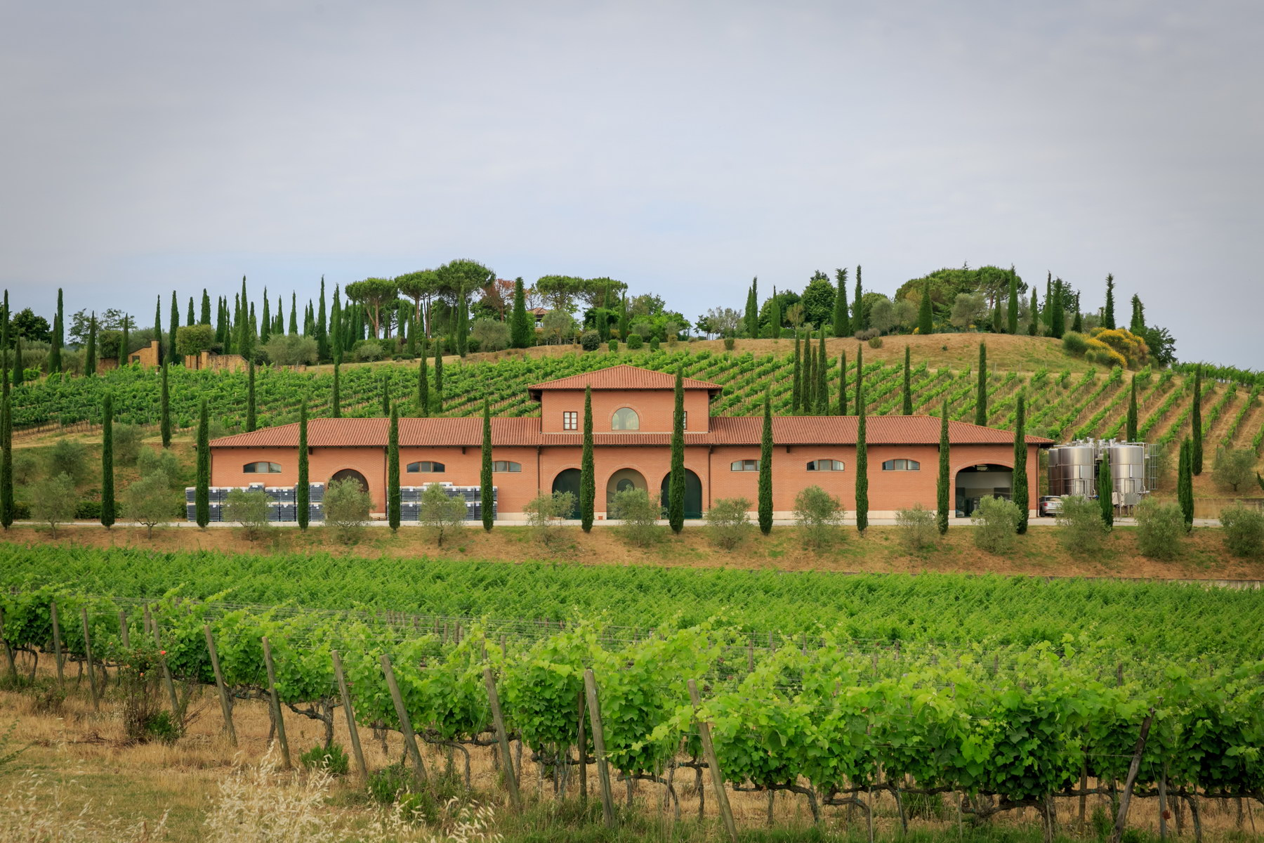 Wonderful wine estate with spectacular views of Montepulciano