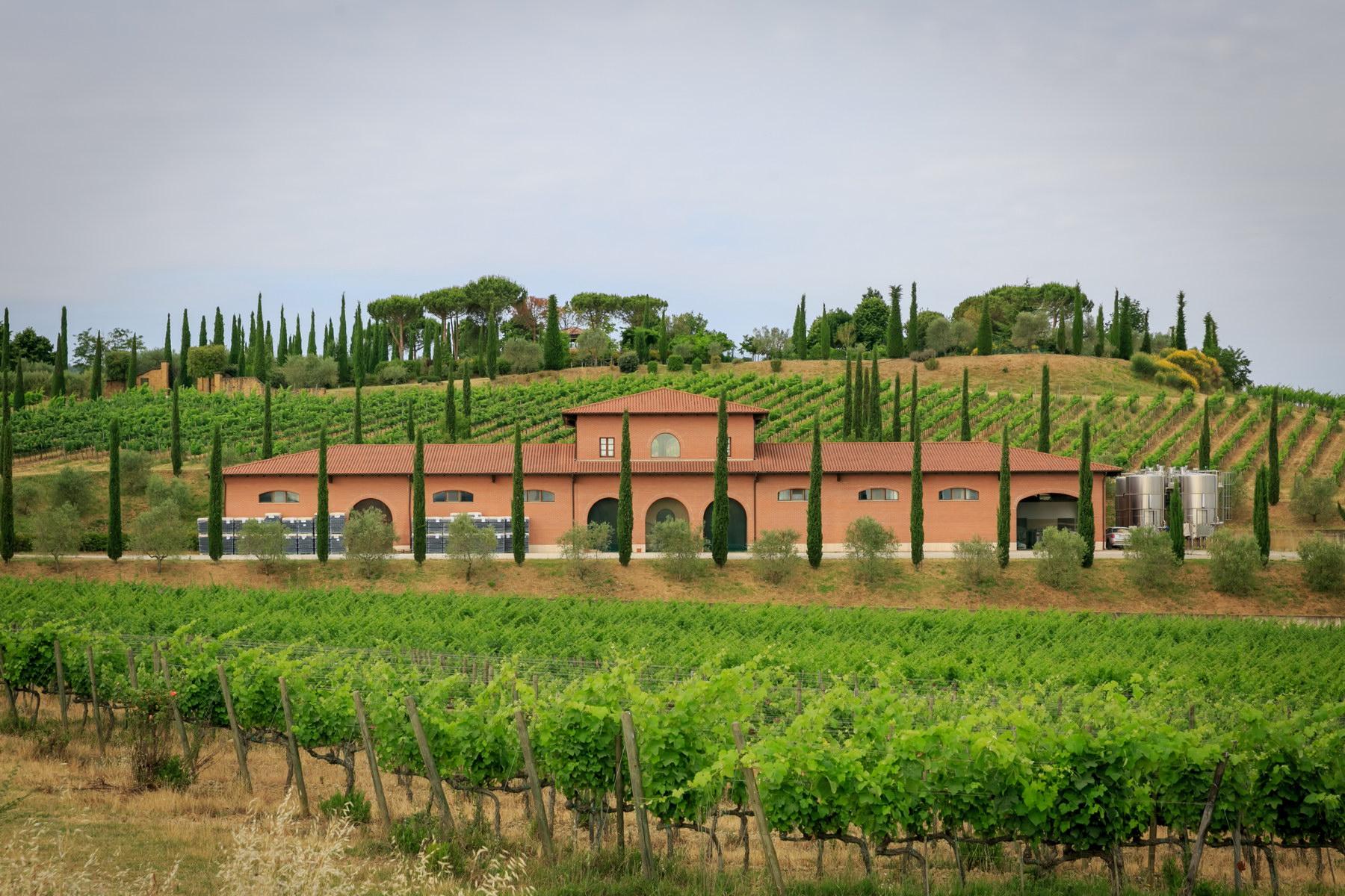 Meravigliosa tenuta vitivinicola con vista spettacolare di Montepulciano