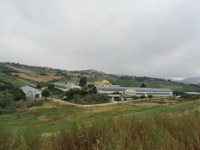 Azienda Agricola in Vendita a Castel di Lama