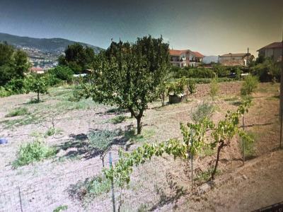 Terreno edificabile in Vendita a Montalto Uffugo